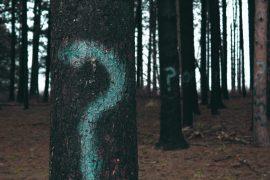 Amit a kamaszok kérdeznek – ha van kitől
